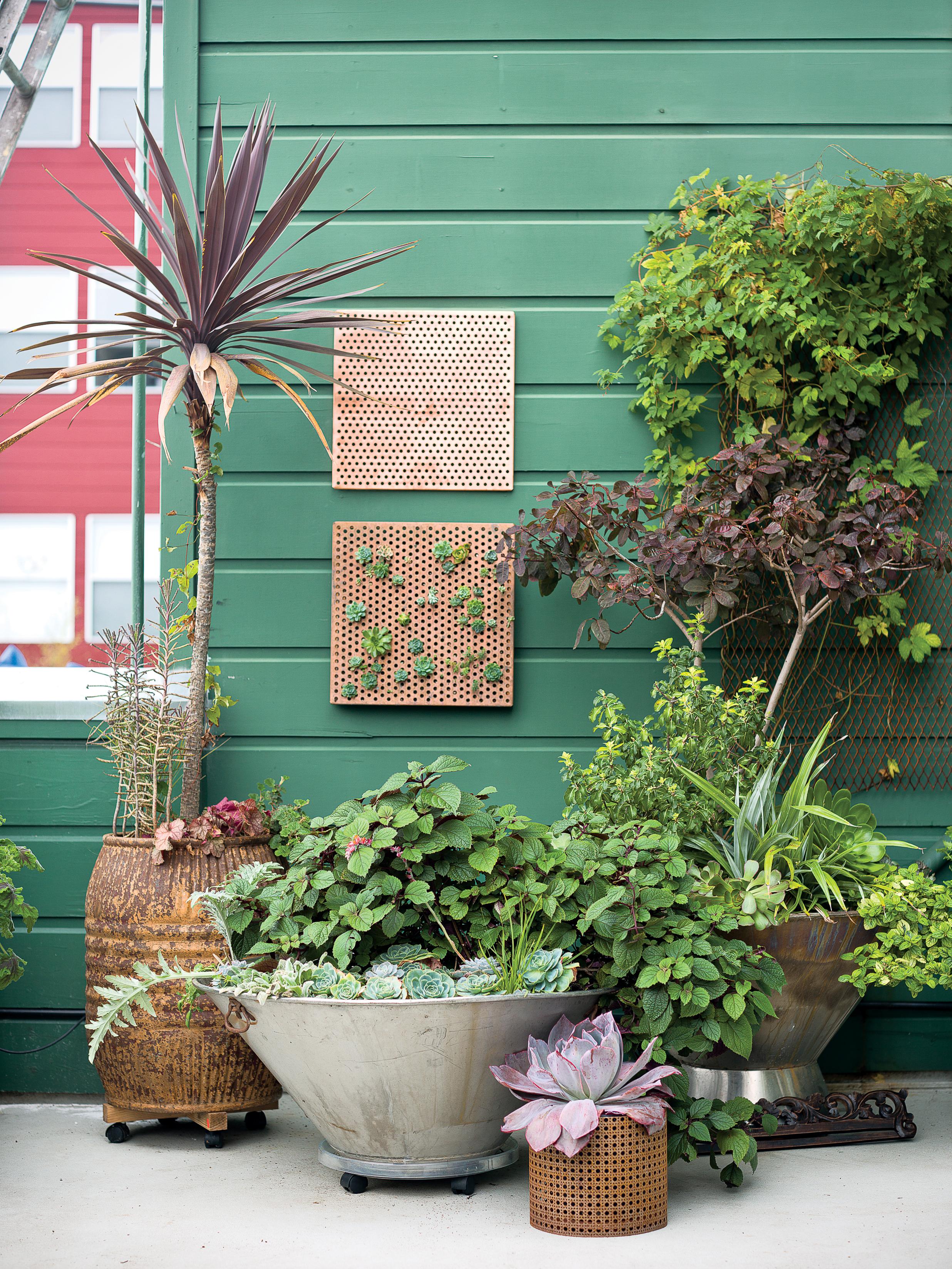 Side Yard Ideas - Sunset - Sunset Magazine on Small Side Yard Ideas id=94009