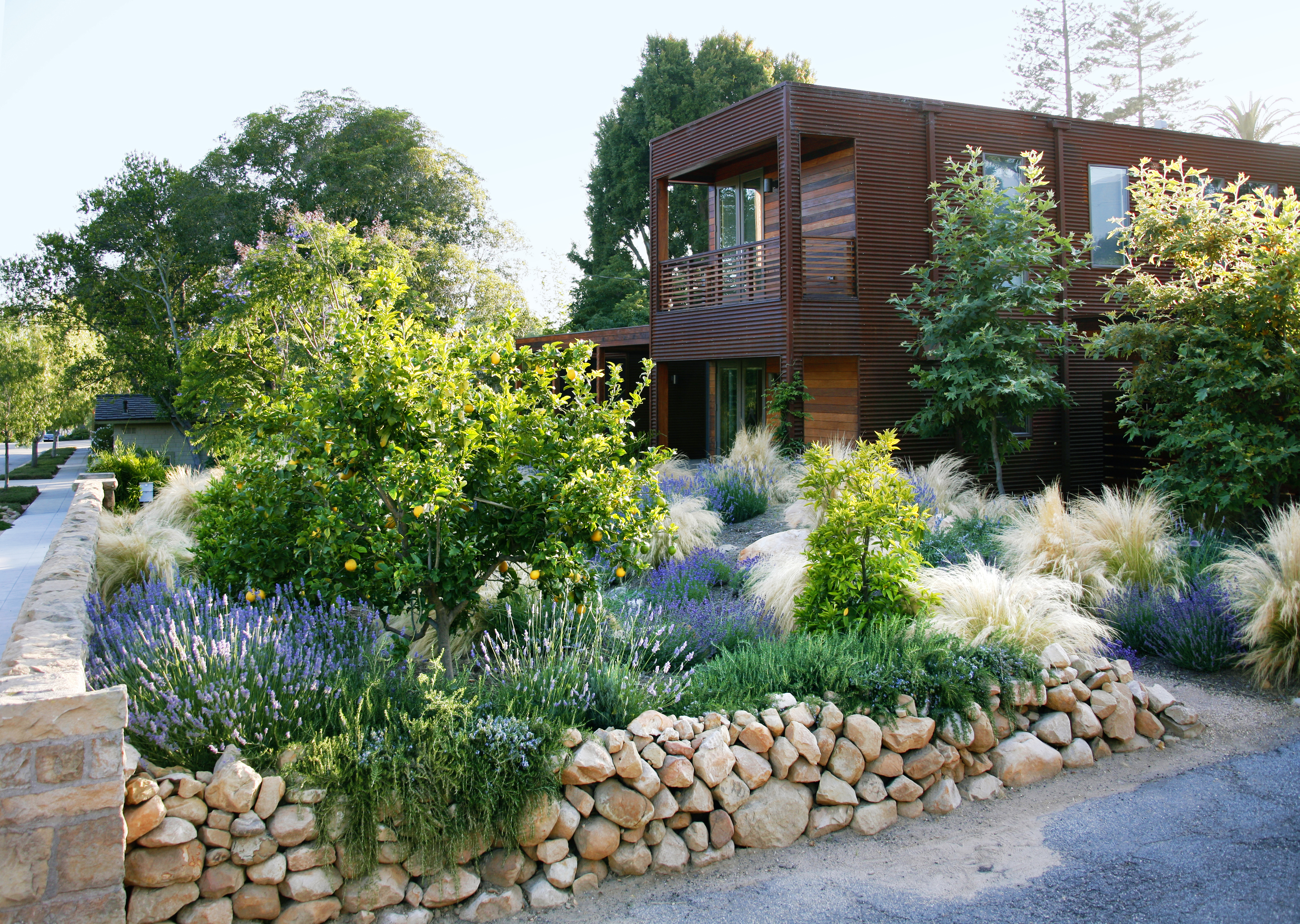 Designing with Drought-Resistant Plants - Sunset - Sunset Magazine on small backyard ideas, no grass backyard ideas, low cost fire pit, low cost gardens, cheap backyard ideas, low cost outdoor kitchen, low cost food, fun backyard ideas, low cost interior design, low cost swimming pools, low cost outdoor rooms, inexpensive backyard patio ideas, low cost concrete pavers, pet backyard ideas, low cost patio designs, low cost gifts, low maintenance fence ideas, low cost home, low cost outdoor fireplace, low cost swing sets,