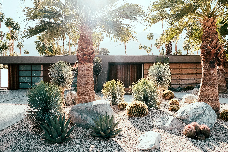 palm-springs-home-front-yard-sun-0816 Palm Desert Home Designs on santa barbara home designs, katy home designs, cypress home designs, lakeside home designs, mountain view home designs, seaside home designs, lake tahoe home designs,