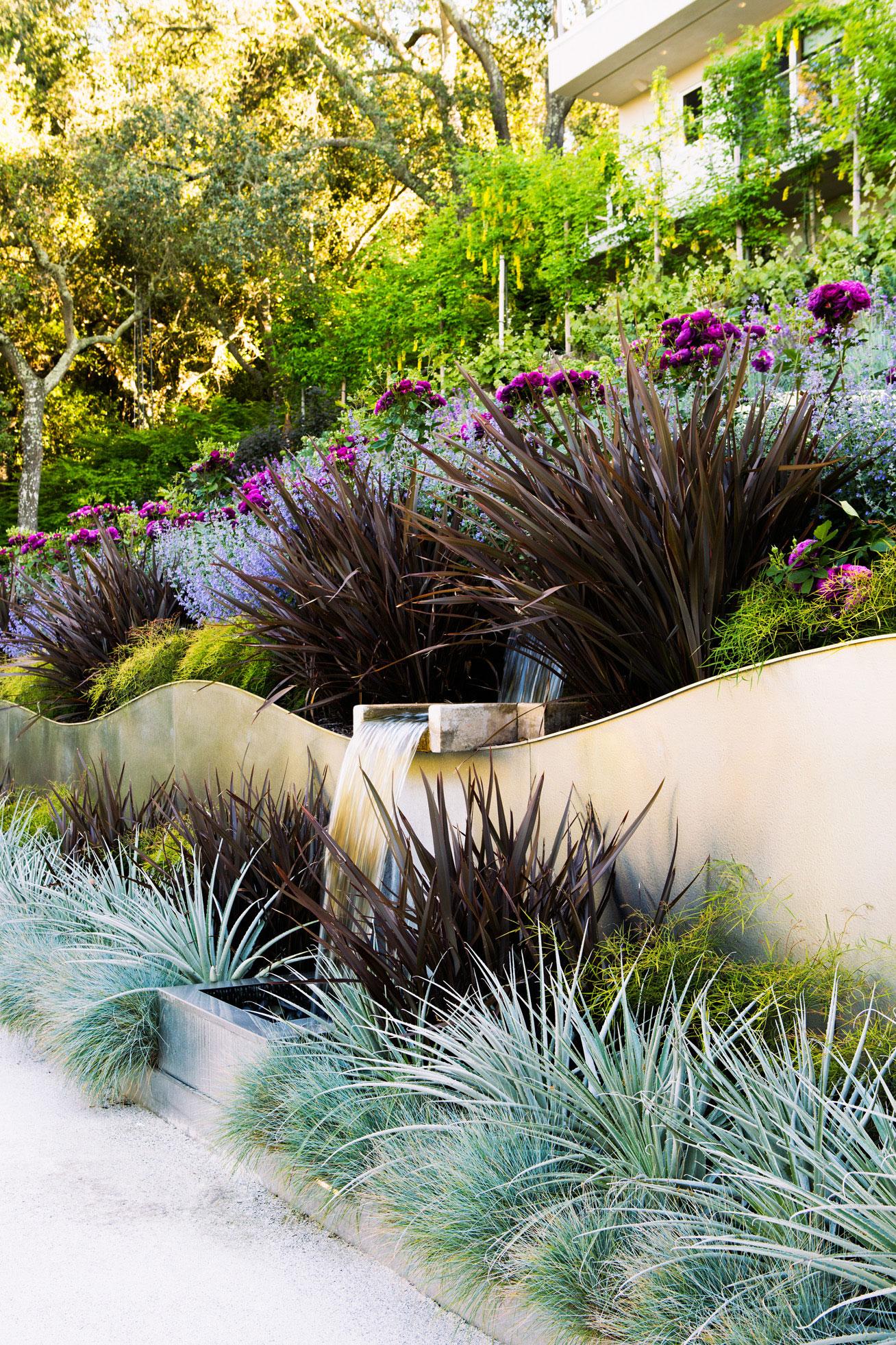 Surprising Planting Pairings - Sunset Magazine