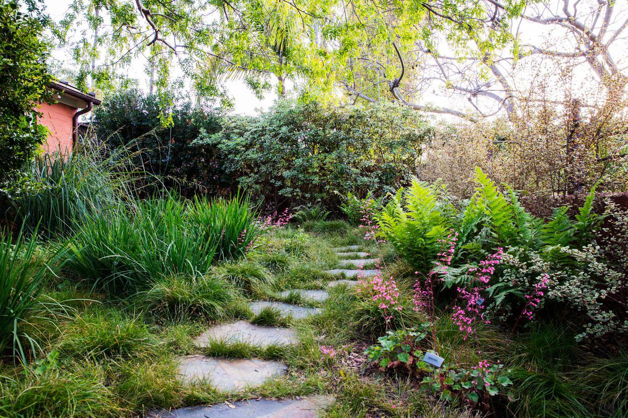 garden shade. Native Shade Garden. \u201c Garden