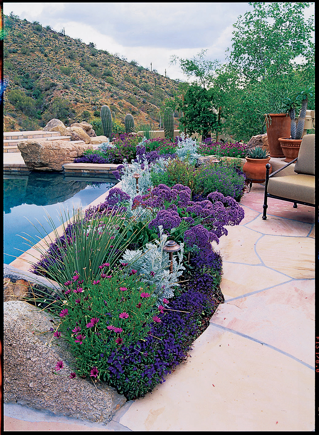 See how to use foliage and flowers to soften a wall - How long after pool shock before swim ...