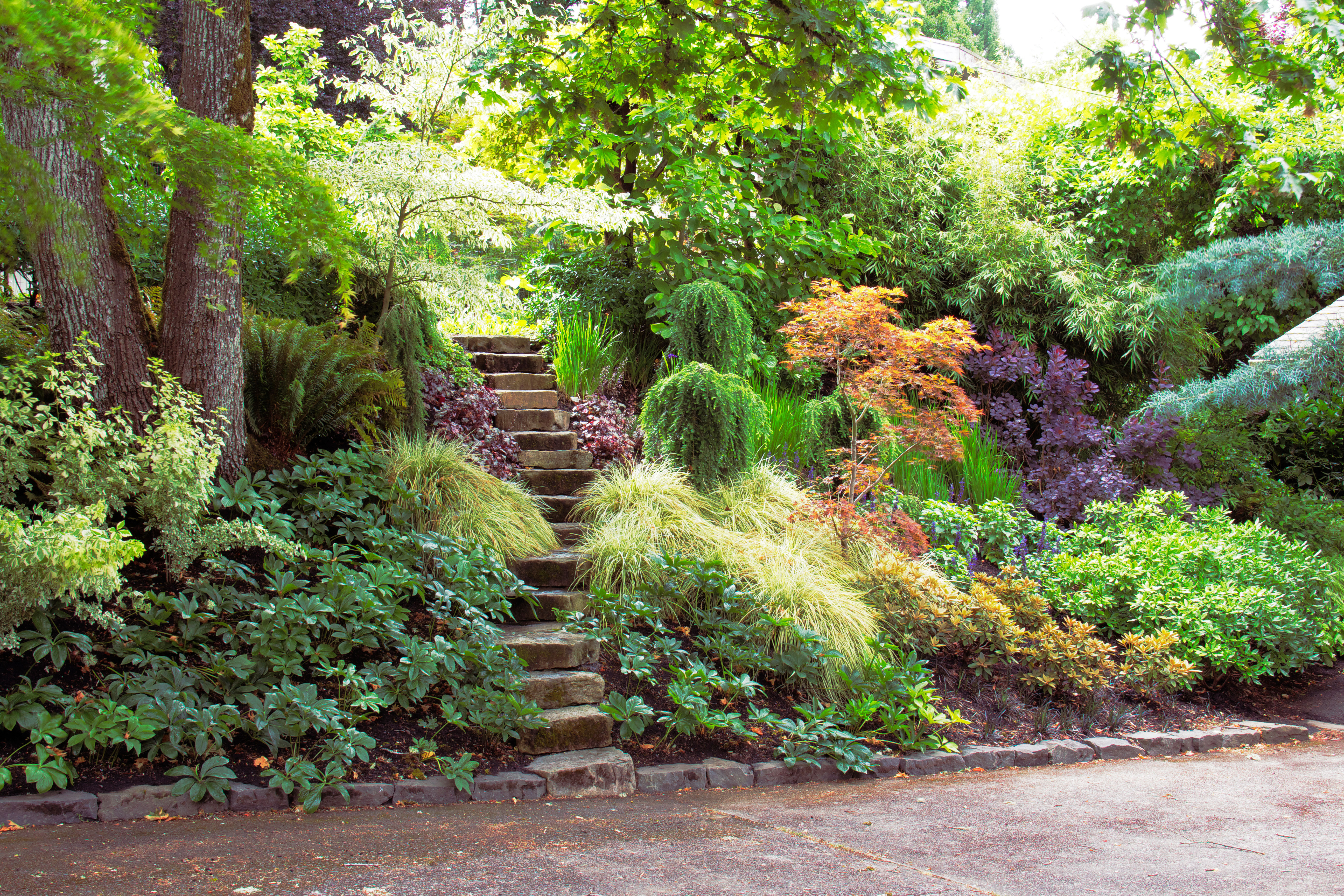 ideas for gardens with slopes