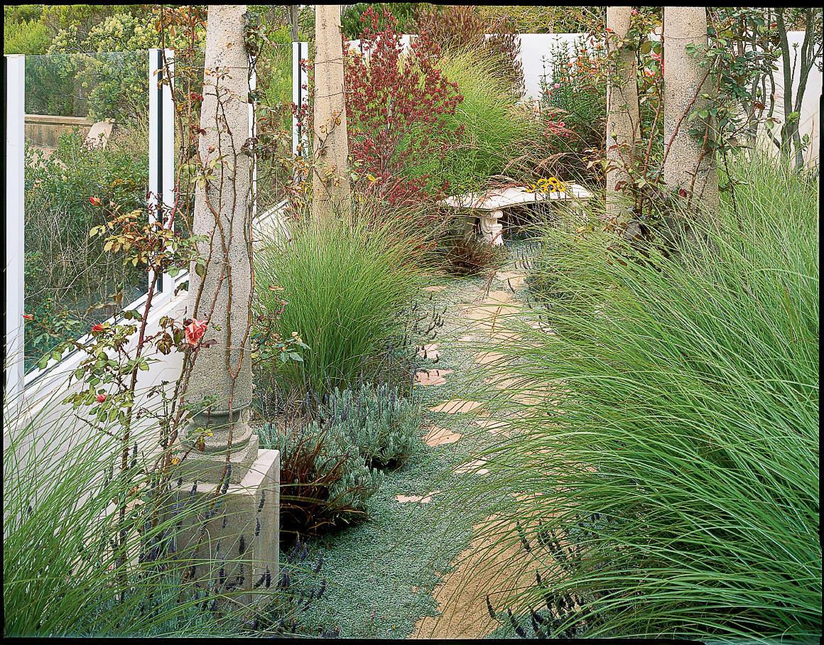 20 garden border designs sunset magazine for Ornamental grass border plants