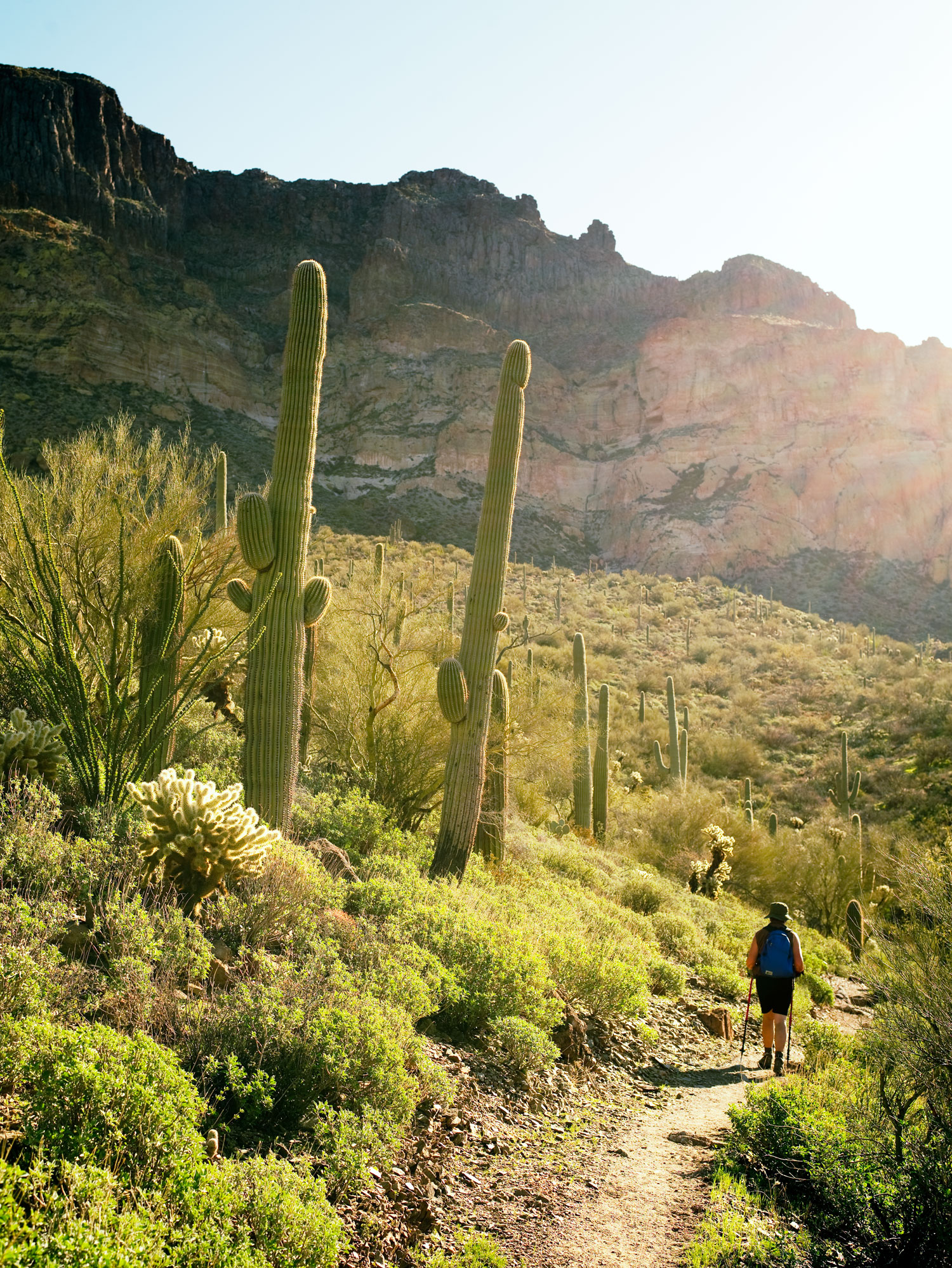 Desert Getaway: the Arizona Trail