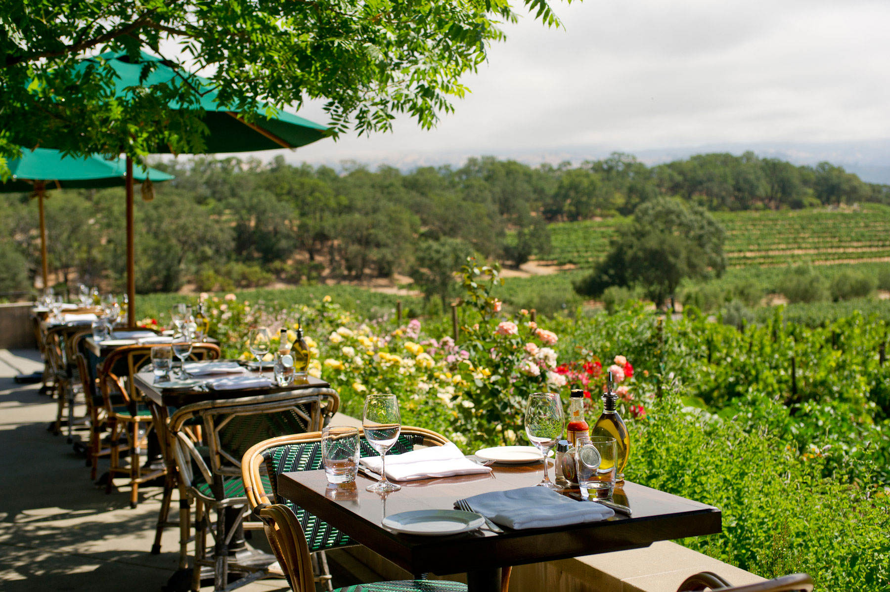 Favorite Alexander Valley Restaurants
