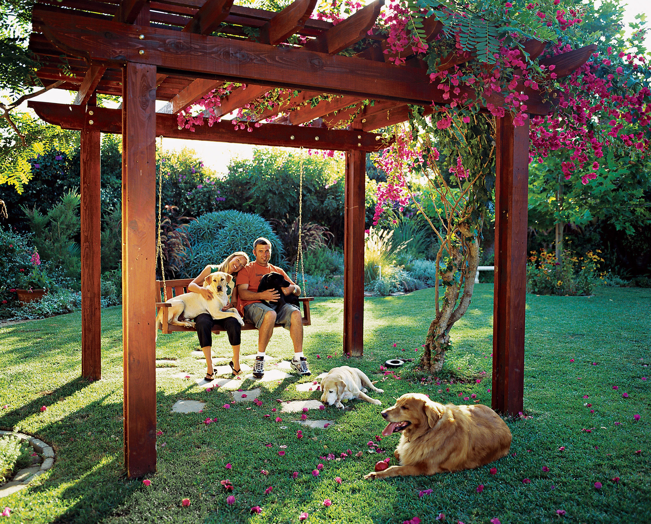 Backyard Ideas for Dogs - Sunset - Sunset Magazine