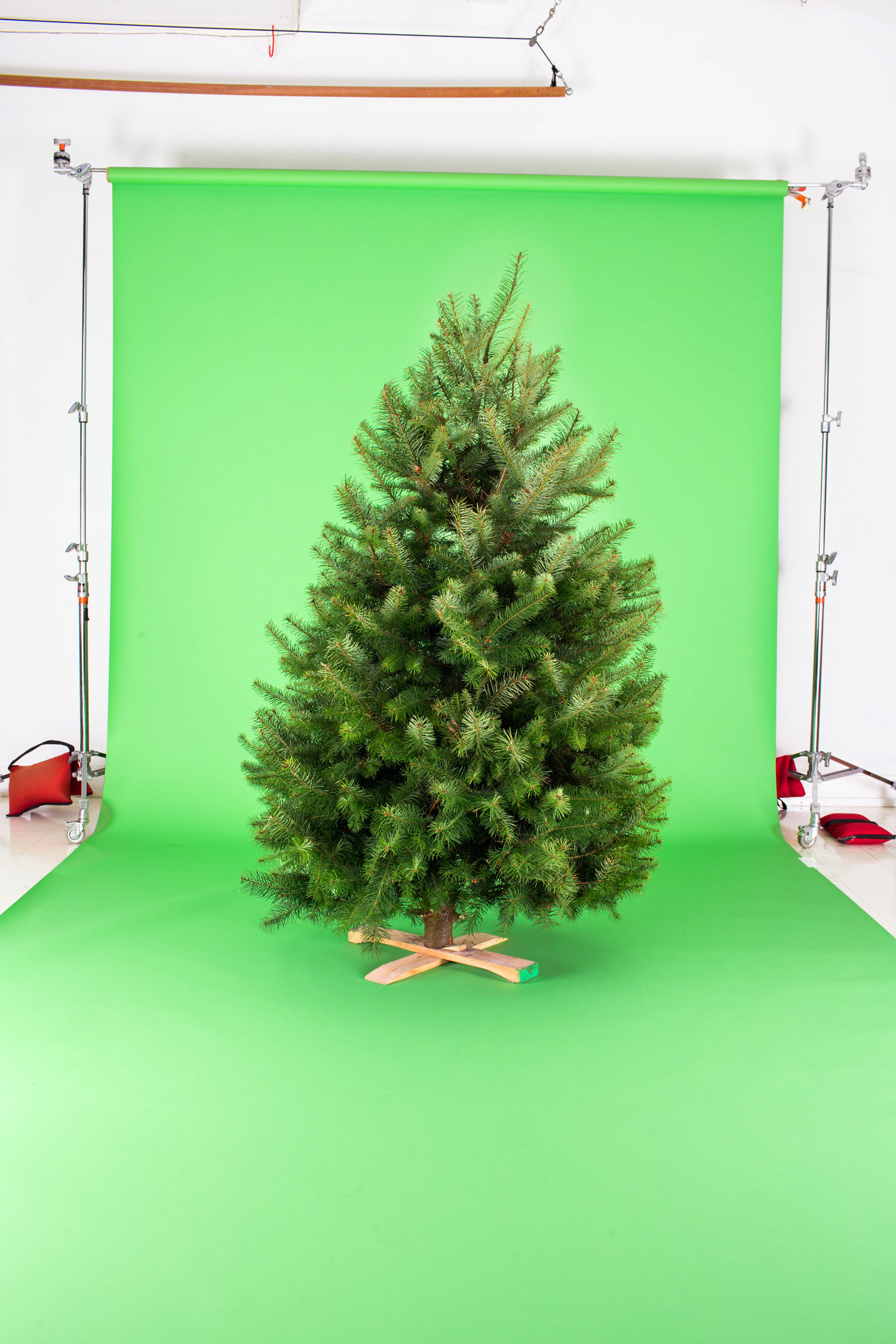 Fake Christmas Tree.Fresh Vs Fake Christmas Tree Choosing The Right One For