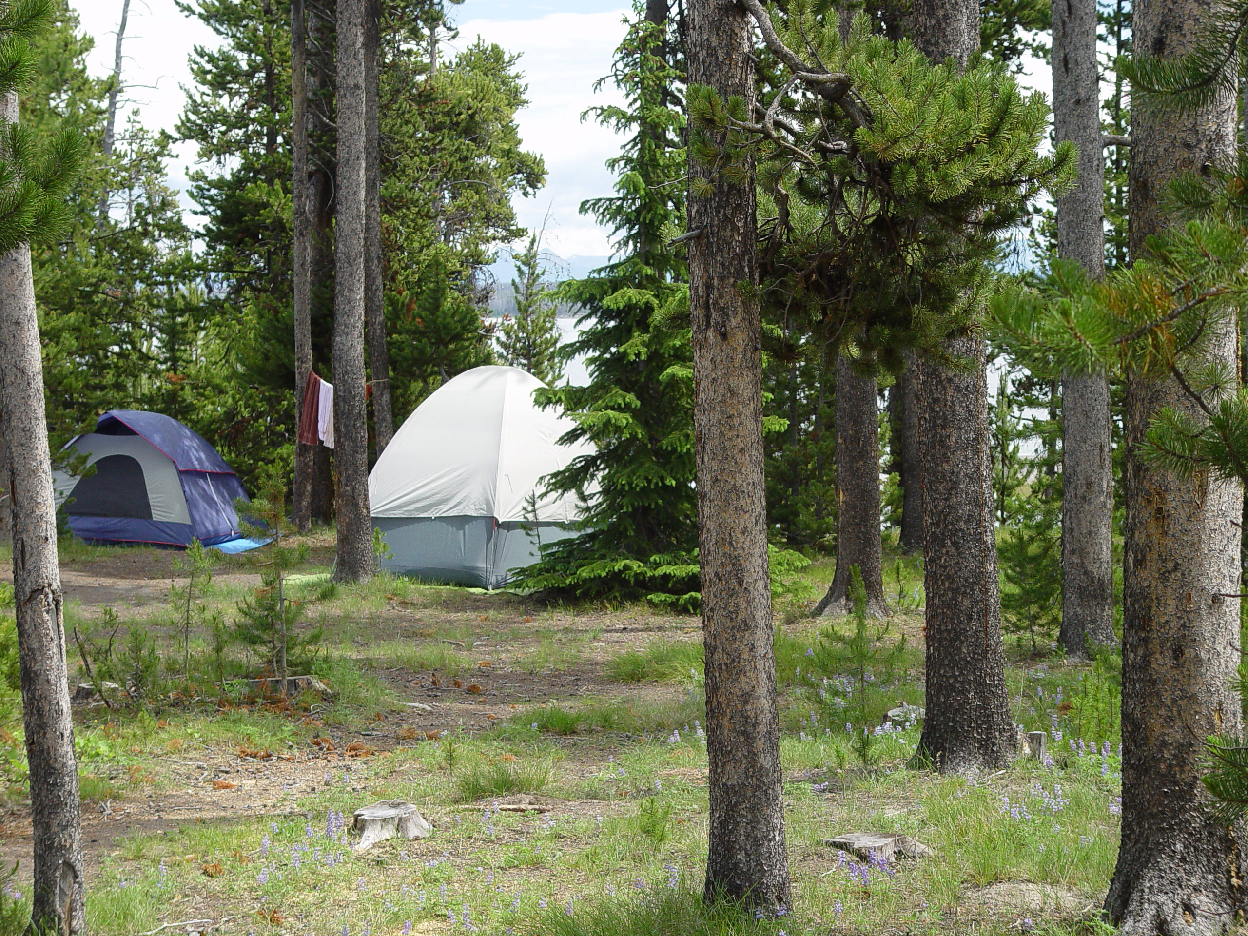Lodging, dining, and camping