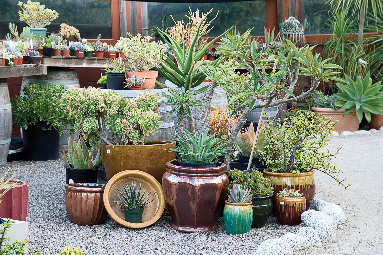 Decorating Garden Ideas 5 great garden decorating ideas sunset magazine arrange a patio vignette workwithnaturefo