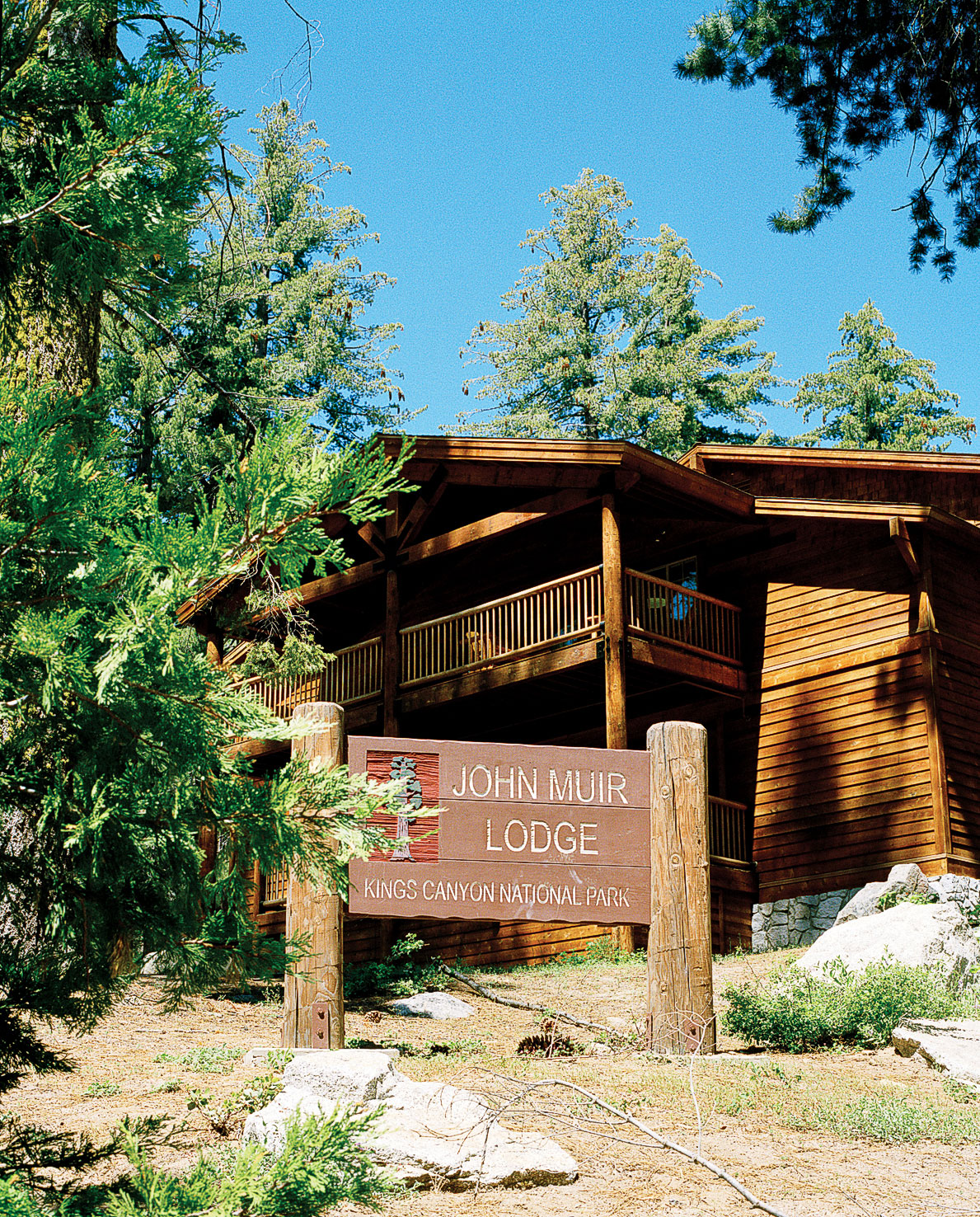 Where to Stay in Sequoia and Kings Canyon
