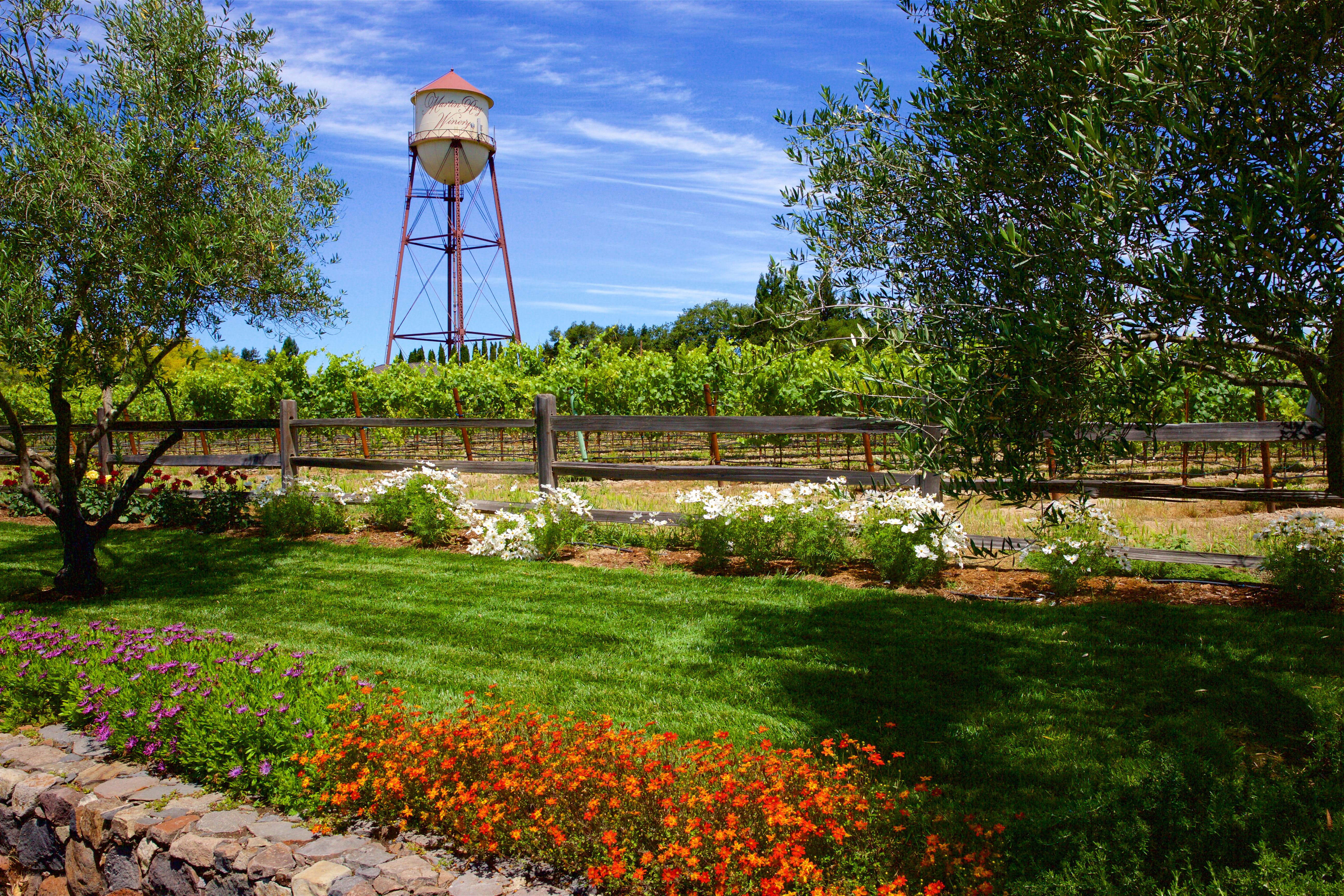 13 Best Alexander Valley Wineries