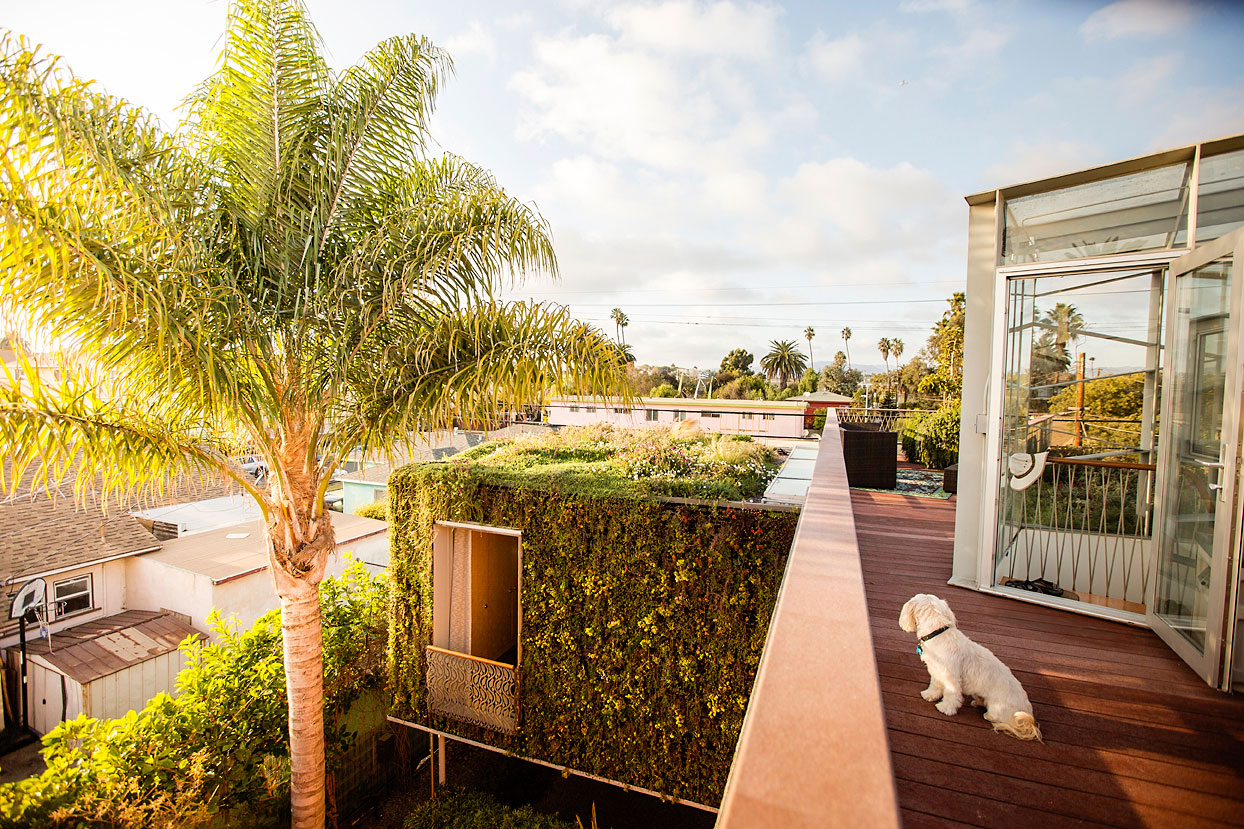 8 Gorgeous Living Roofs - Sunset Magazine