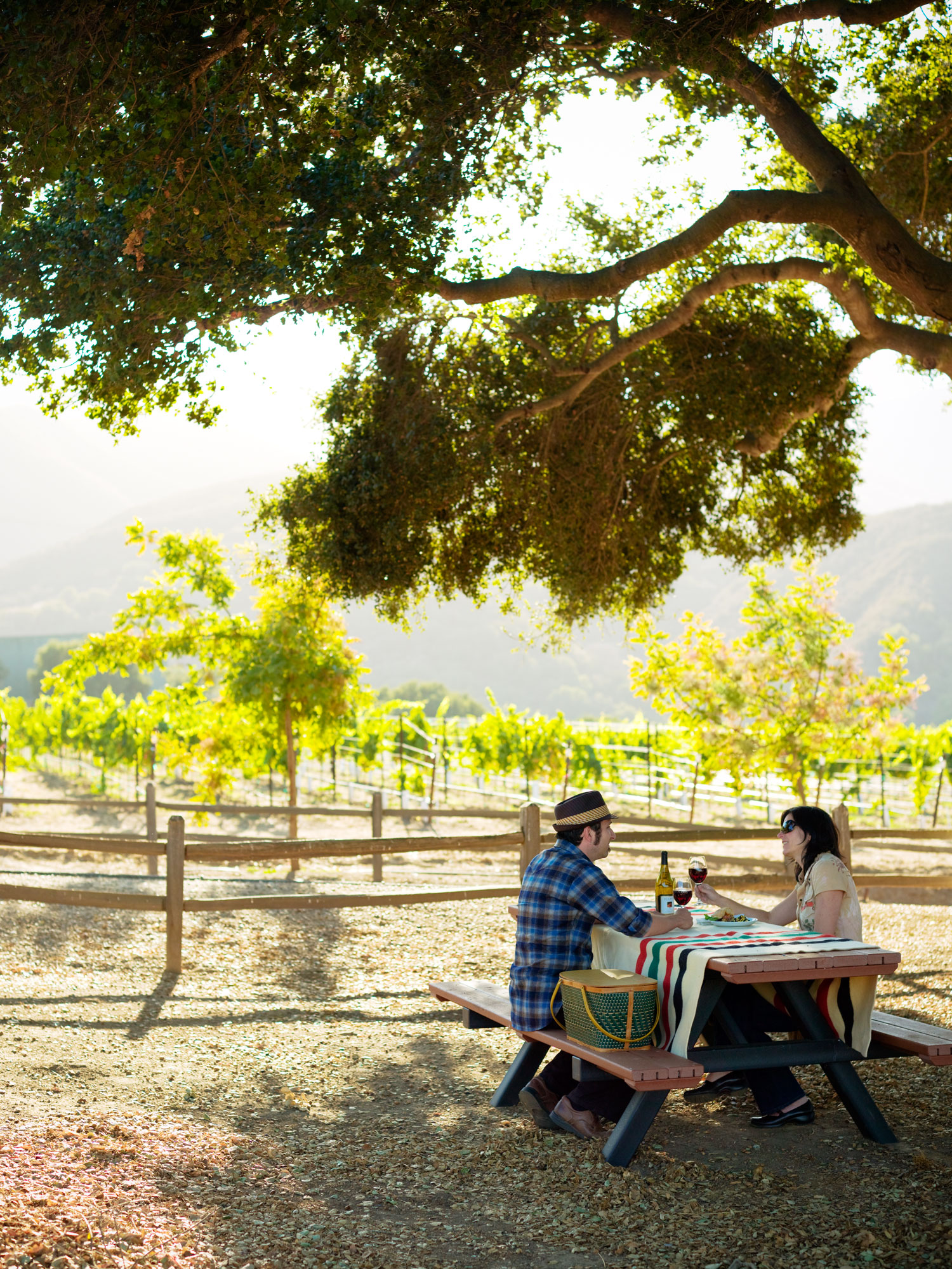 Day Trip: Monterey's Wine Road