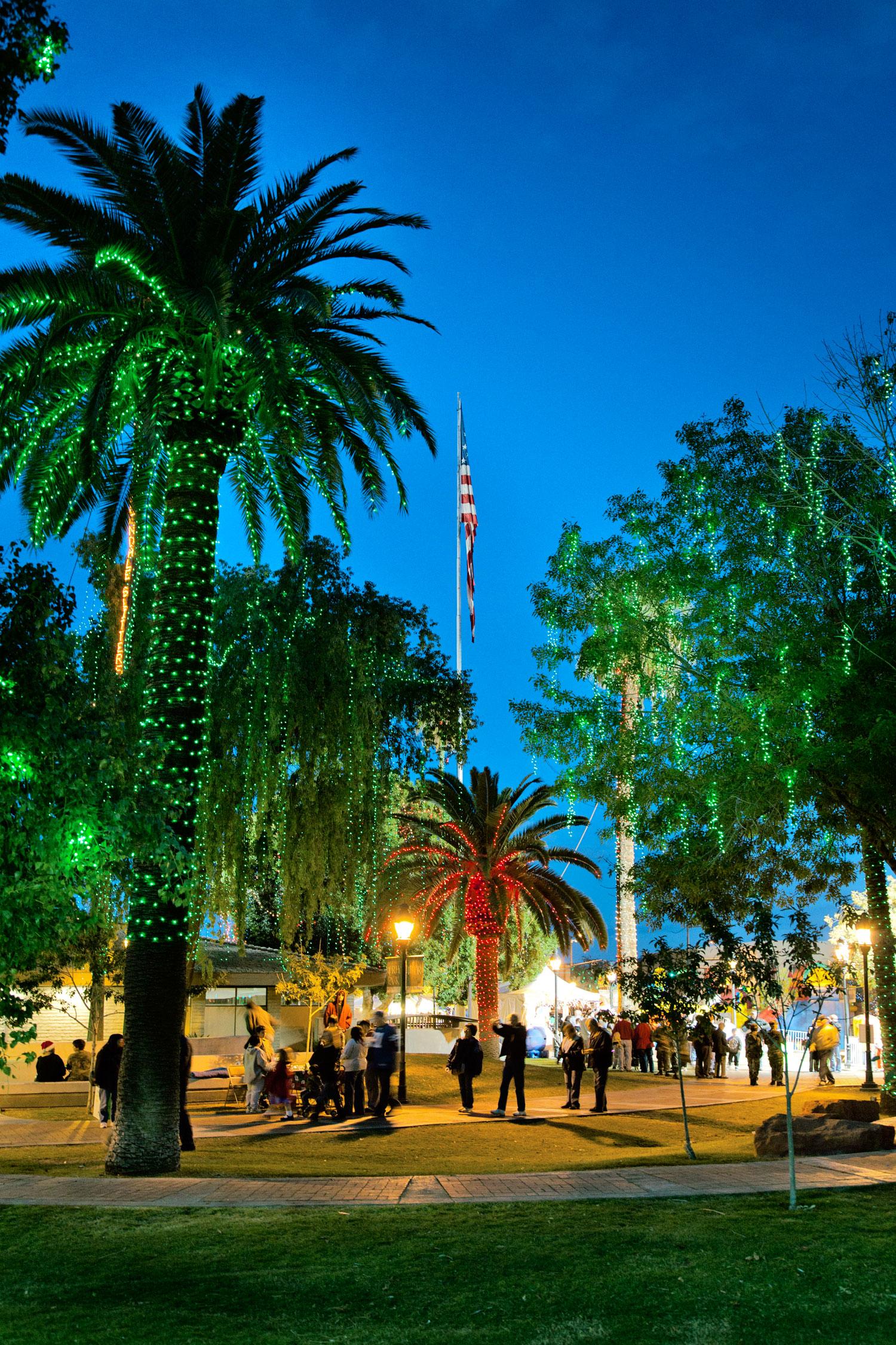 Diy Outdoor Christmas Lights