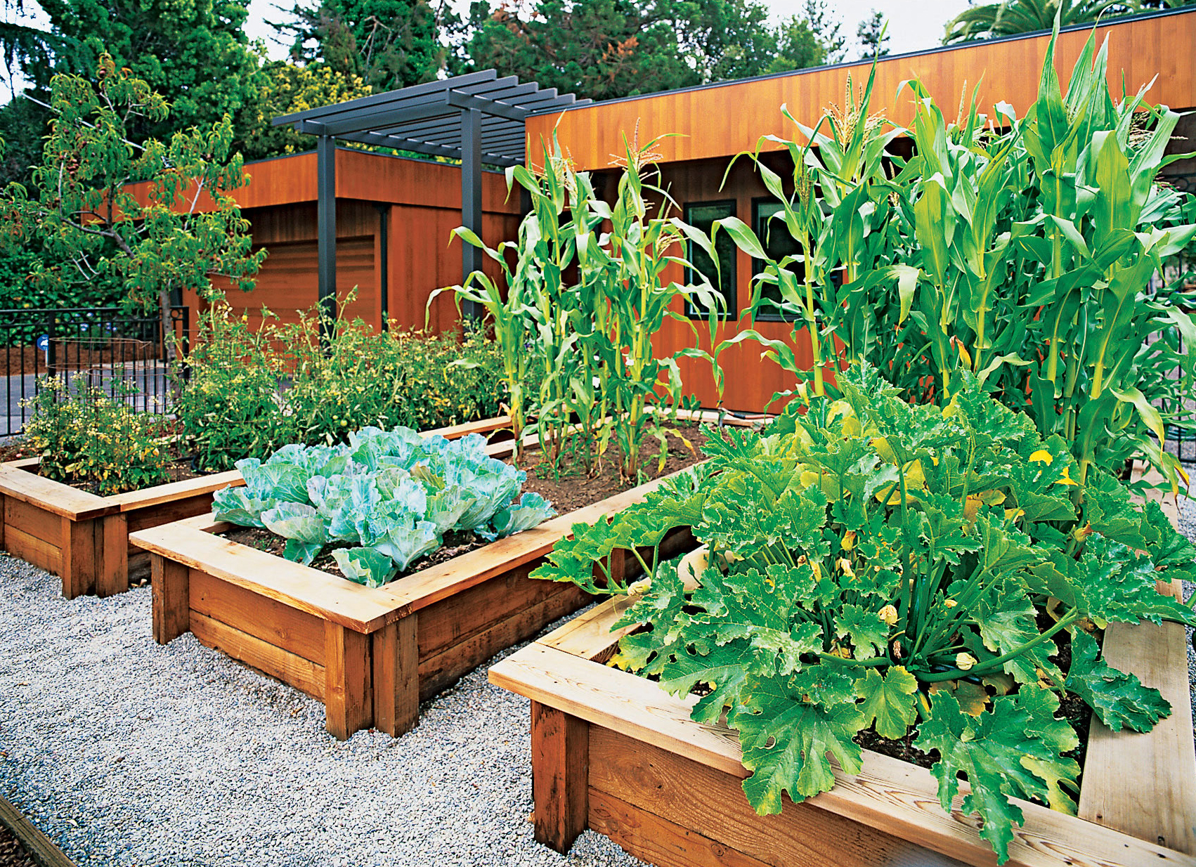 Sunset magazine for Vegetable garden bed design
