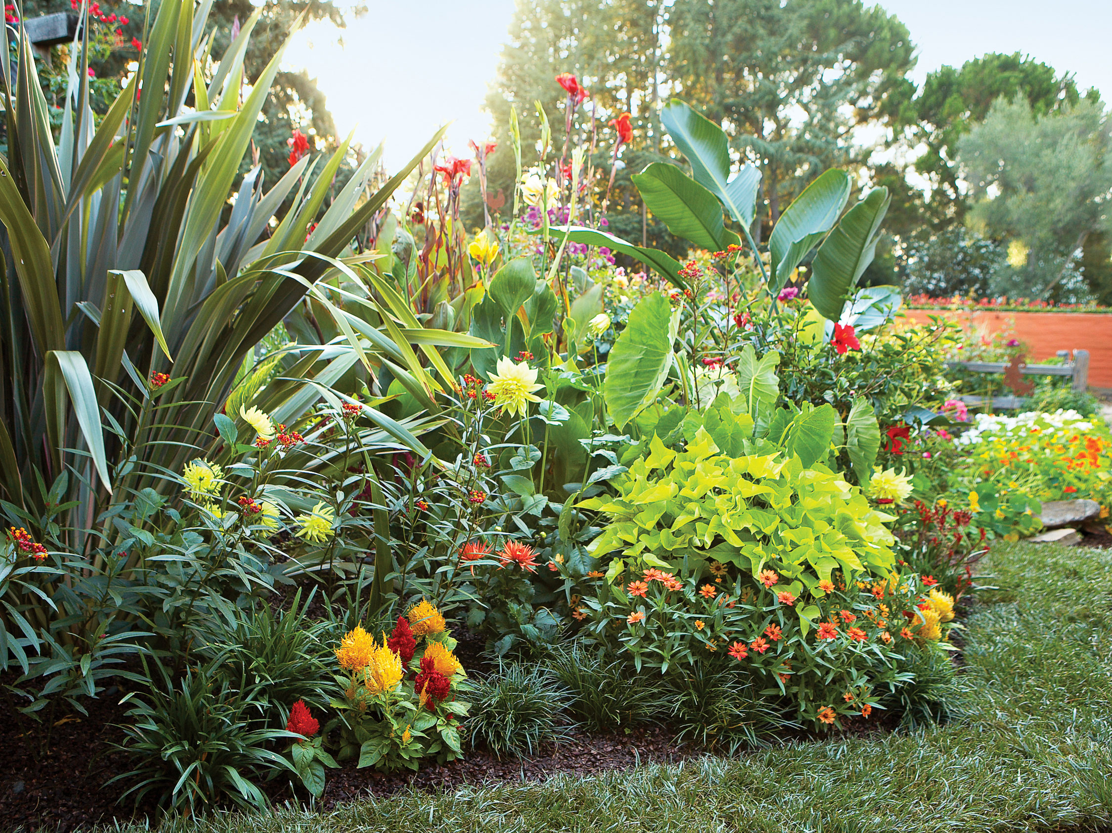 Sunset magazine for Easy care landscape design