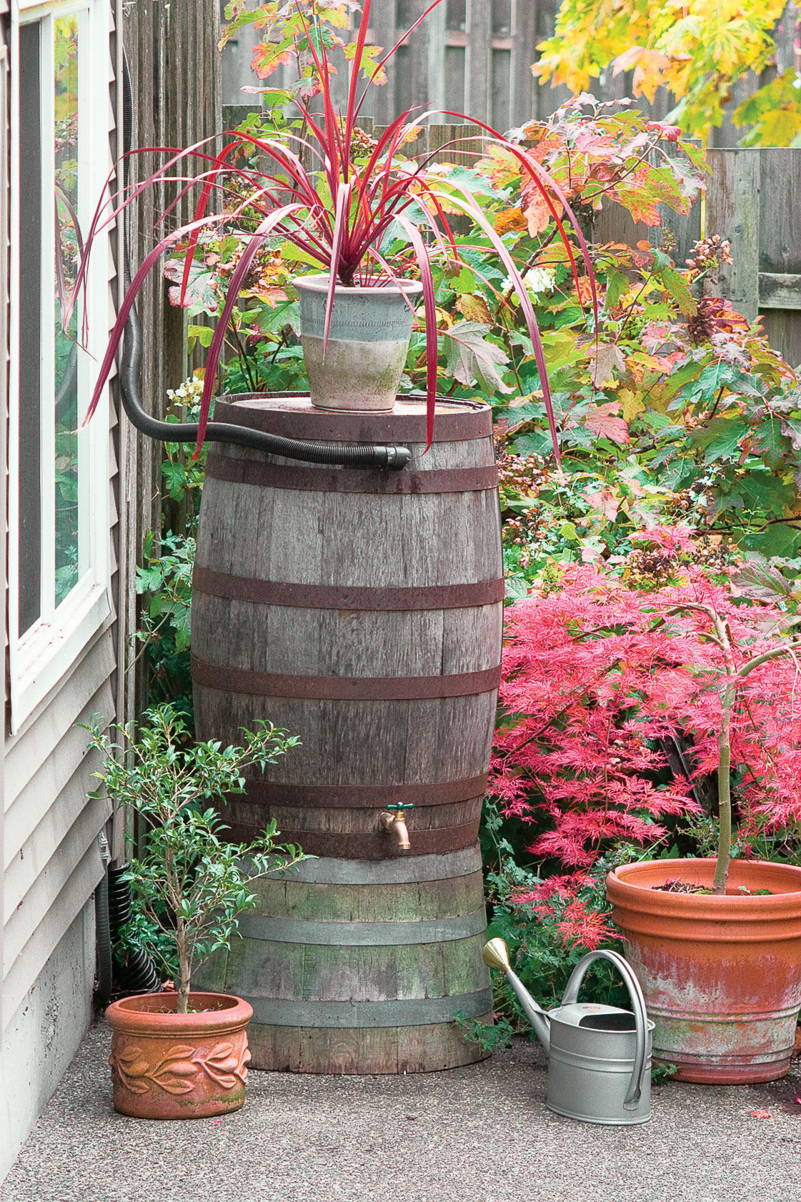 Copper rainwater chain