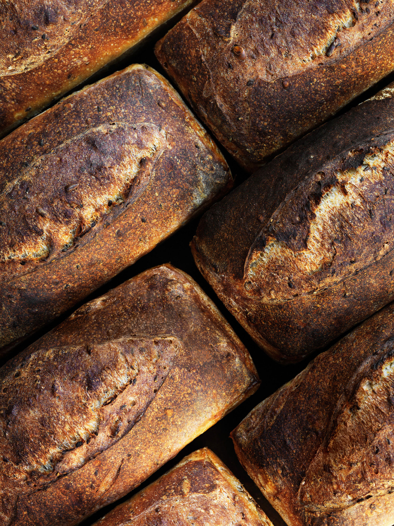 San Francisco's Sourdough Bread Renaissance