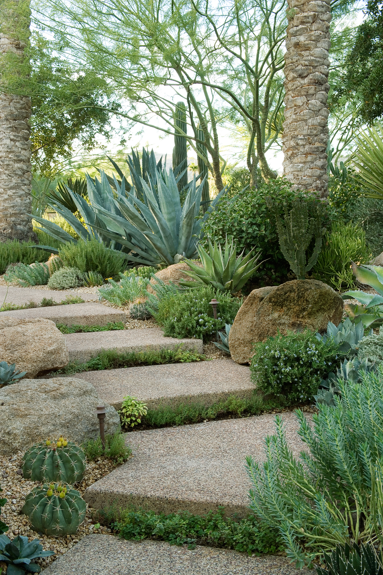 Garden Path Landscaping 38 gorgeous garden paths sunset magazine make a park out of a path workwithnaturefo