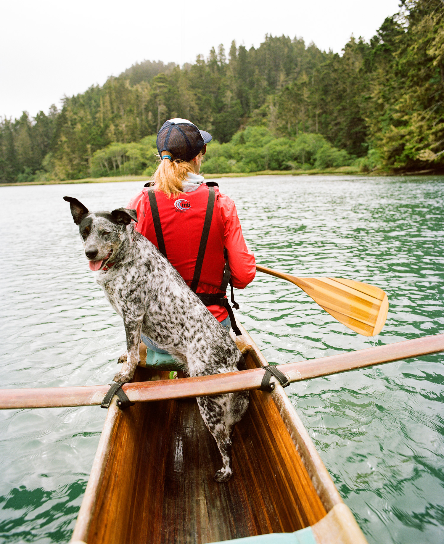 best dog-friendly vacations - sunset magazine