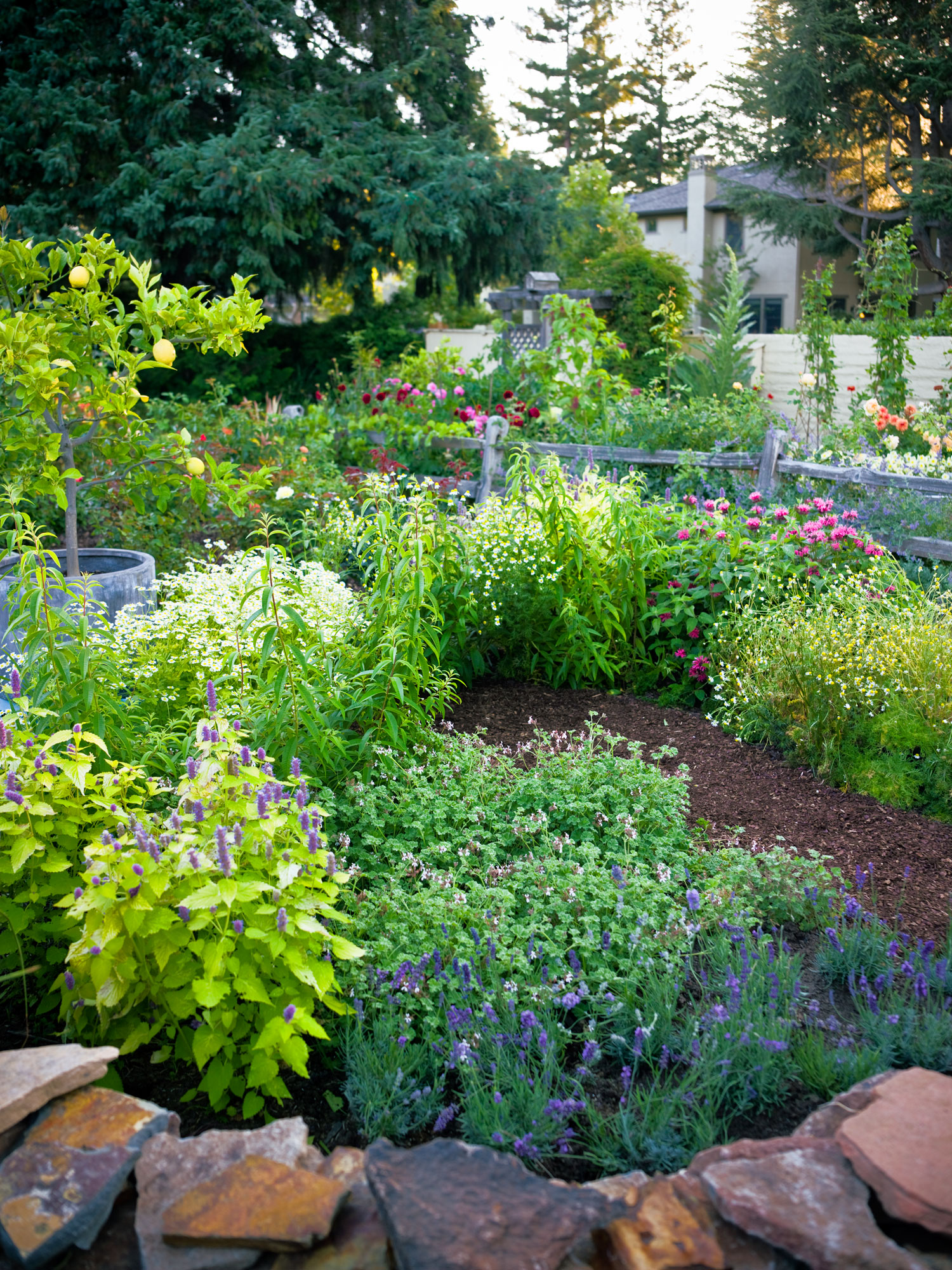 4 Easy-Care Flower Beds - Sunset Magazine on Flower Bed Ideas Backyard id=73374