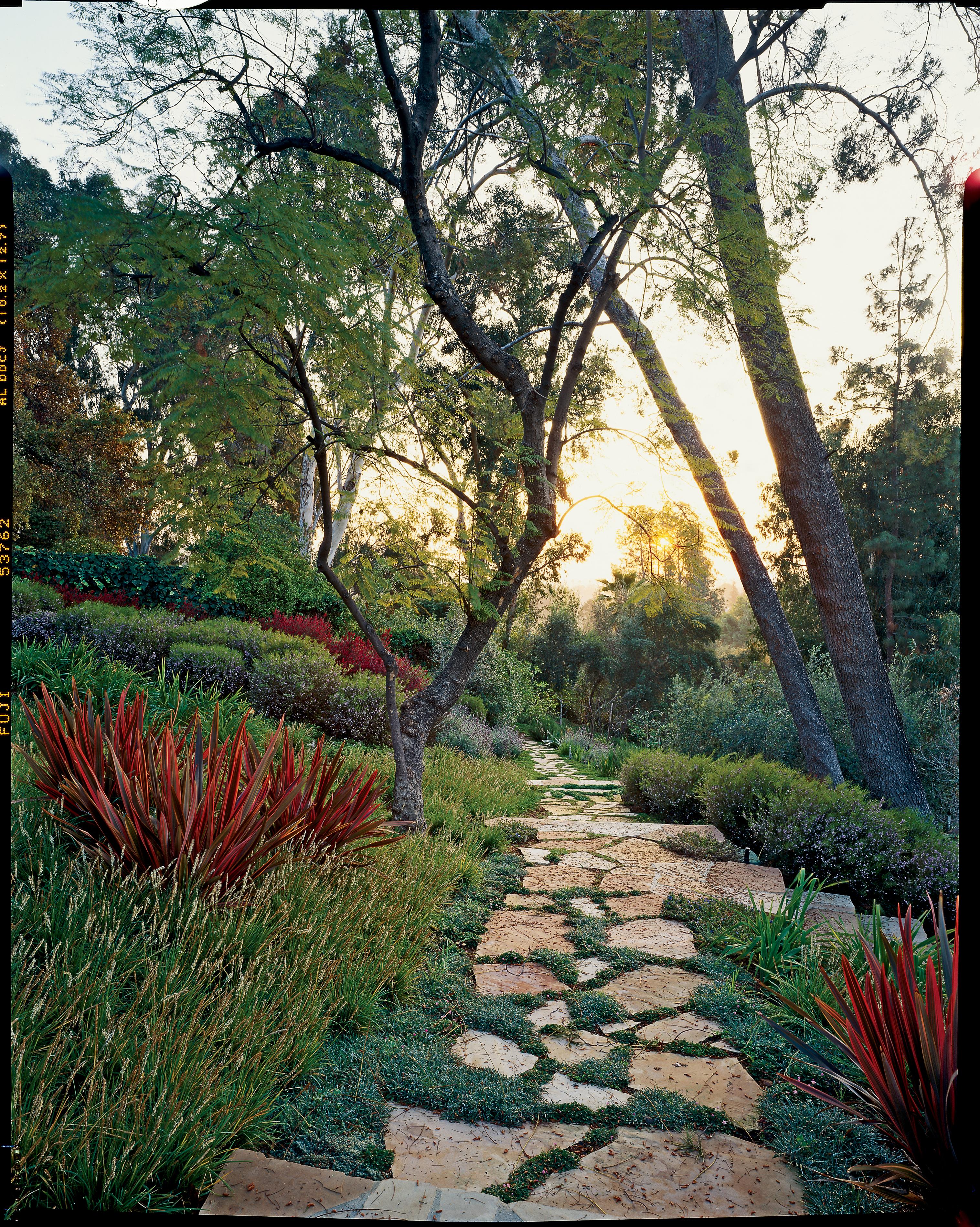 Garden Path Landscaping 38 gorgeous garden paths sunset magazine wooded escape workwithnaturefo