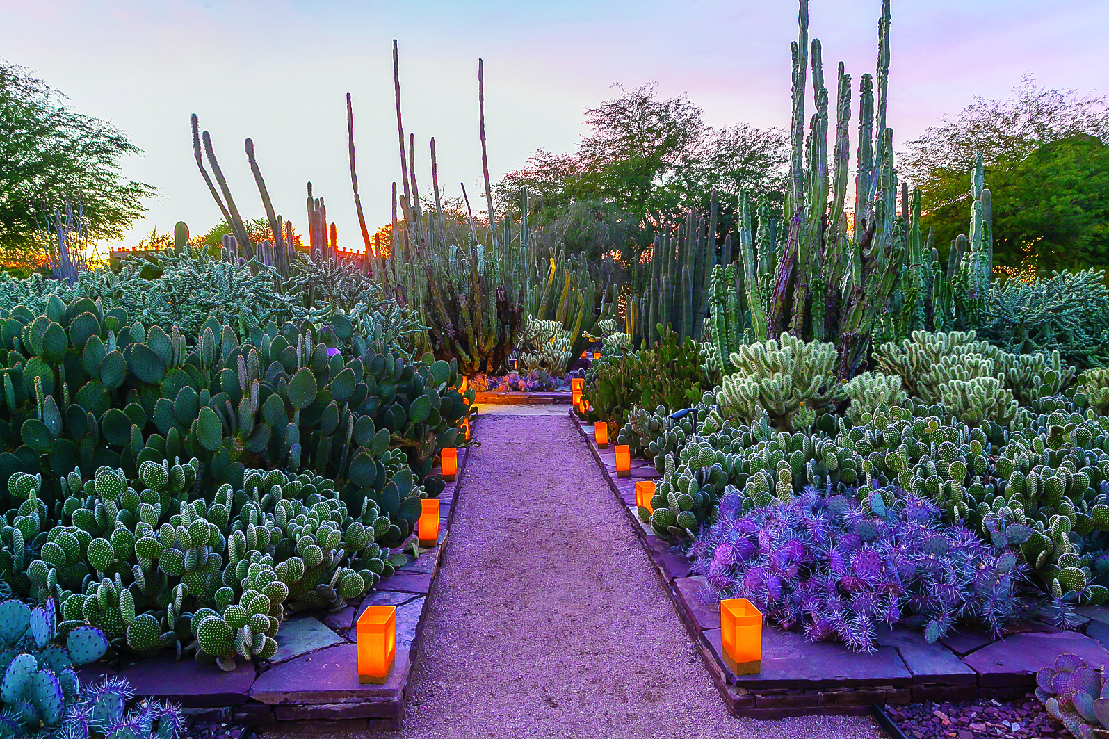 15 Essential Western Experiences for Garden-Lovers