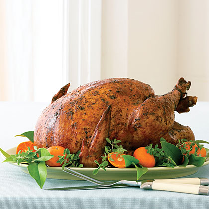 Chile and Spice Grilled Turkey