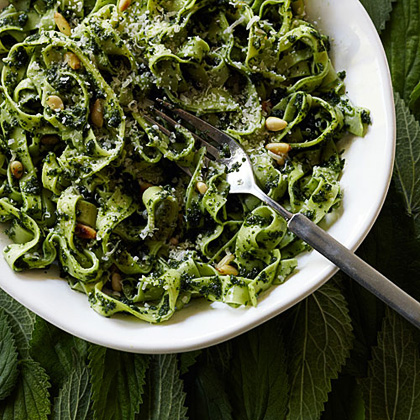 su-Tagliatelle with Nettle and Pine Nut Sauce