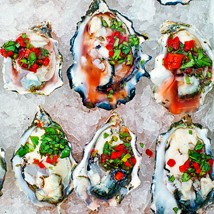 su-Oysters on the Half Shell with Chile, Cilantro, and Meyer Lemon Salsa