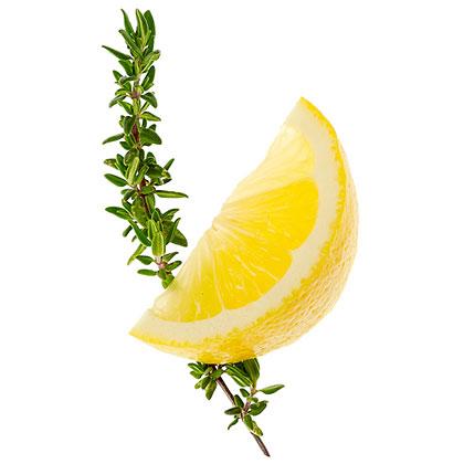 su-Lemon-Thyme Simple Syrup