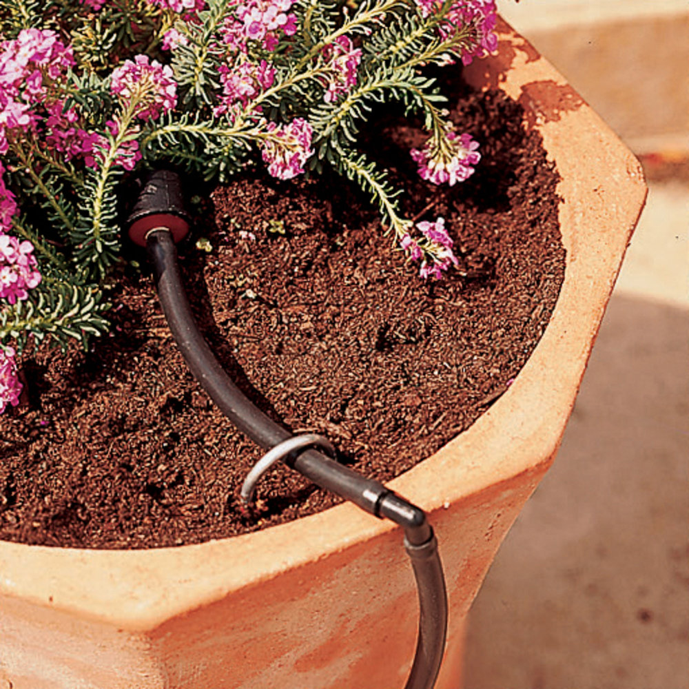 Drip watering for containers - Sunset Magazine