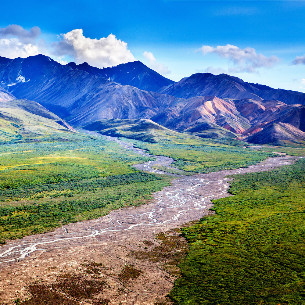 Denali National Park Alaska Hotels