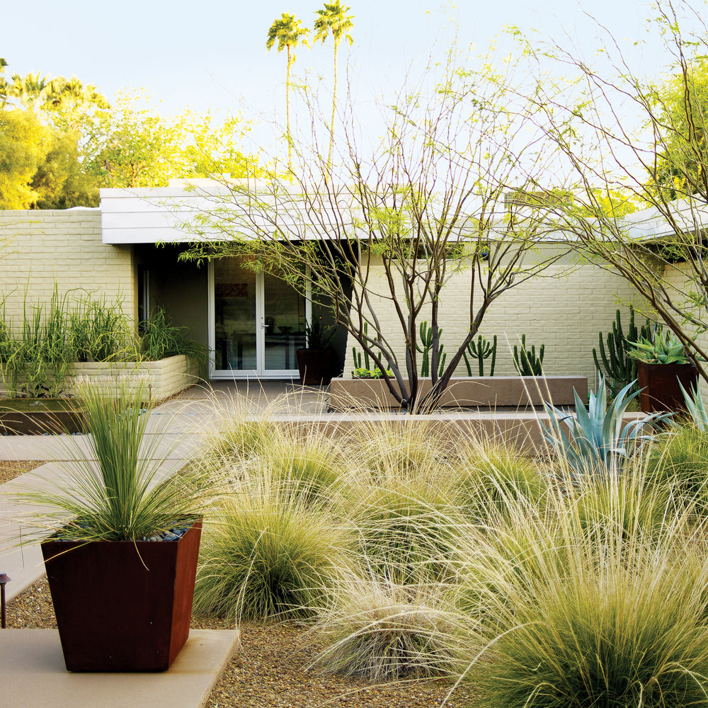 Desert Designs Front Yard: Sometimes The Best Way To Reinvent A Front Yard Is The
