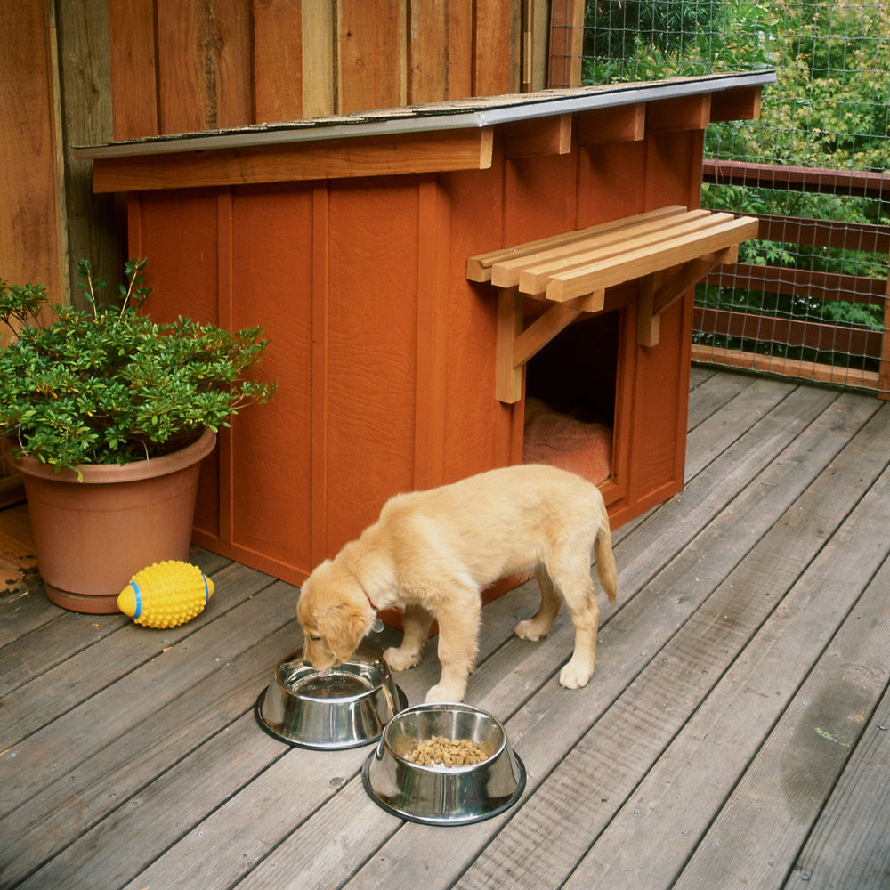 pets-diy-doghouse X Large Dog House Building Plans on very large dog house plans, diy dog house plans, big dog house plans, unique dog house plans, 2 dog house plans, mini dog house plans, large breed dog house plans, saltbox dog house plans, easy dog house plans, duplex dog house plans, custom dog house plans, cool dog house plans, roof dog house plans, winter dog house plans, dog house with porch plans, printable dog house plans, giant dog house plans, extra large dog house plans, xl dog house plans, xxl dog house plans,