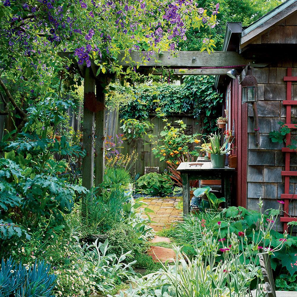 Small Garden Secrets: Small-Yard Secrets