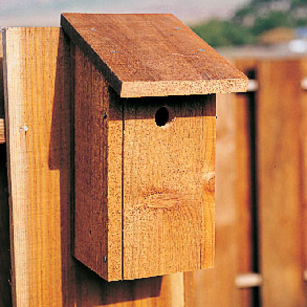 Build A Better Birdhouse Sunset Magazine