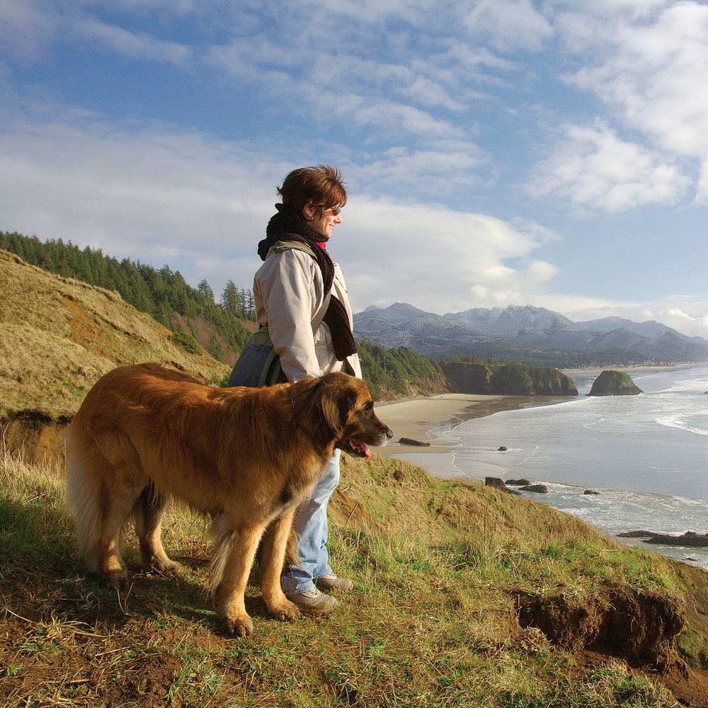 Getaways Where You Can Take Your Dog