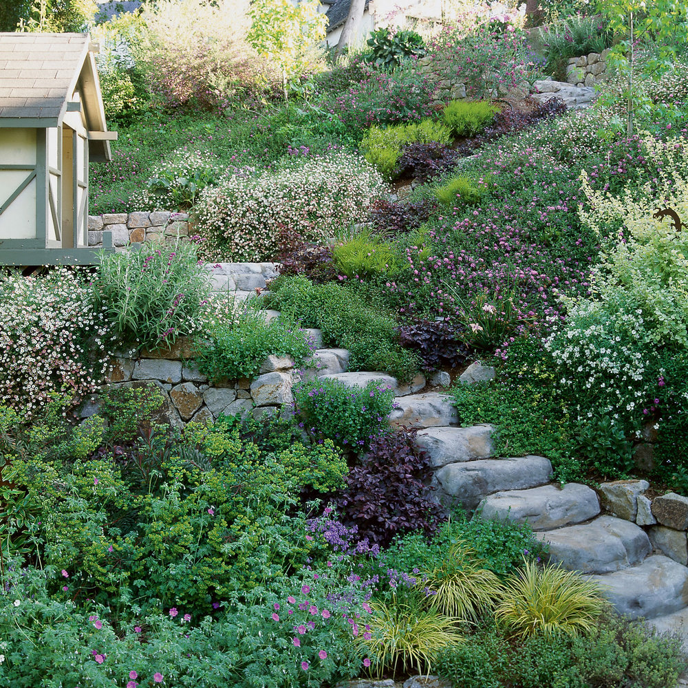 Solutions: Slope Success - Sunset Magazine on Steep Sloping Garden Ideas id=81488