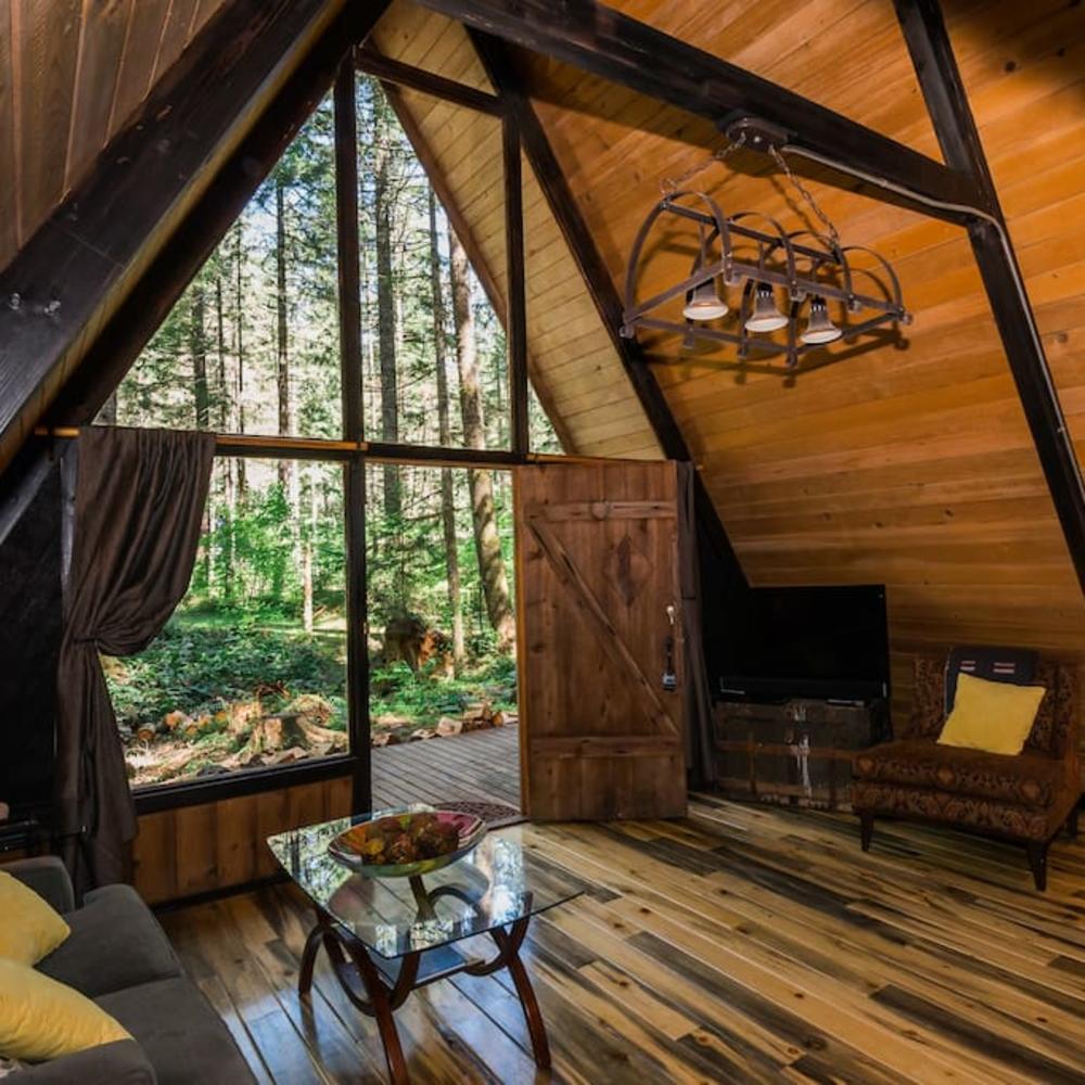 Artist Studio Overlooks Guest Cabin With Rooftop Garden: 11 Cozy Cabin Vacation Rentals