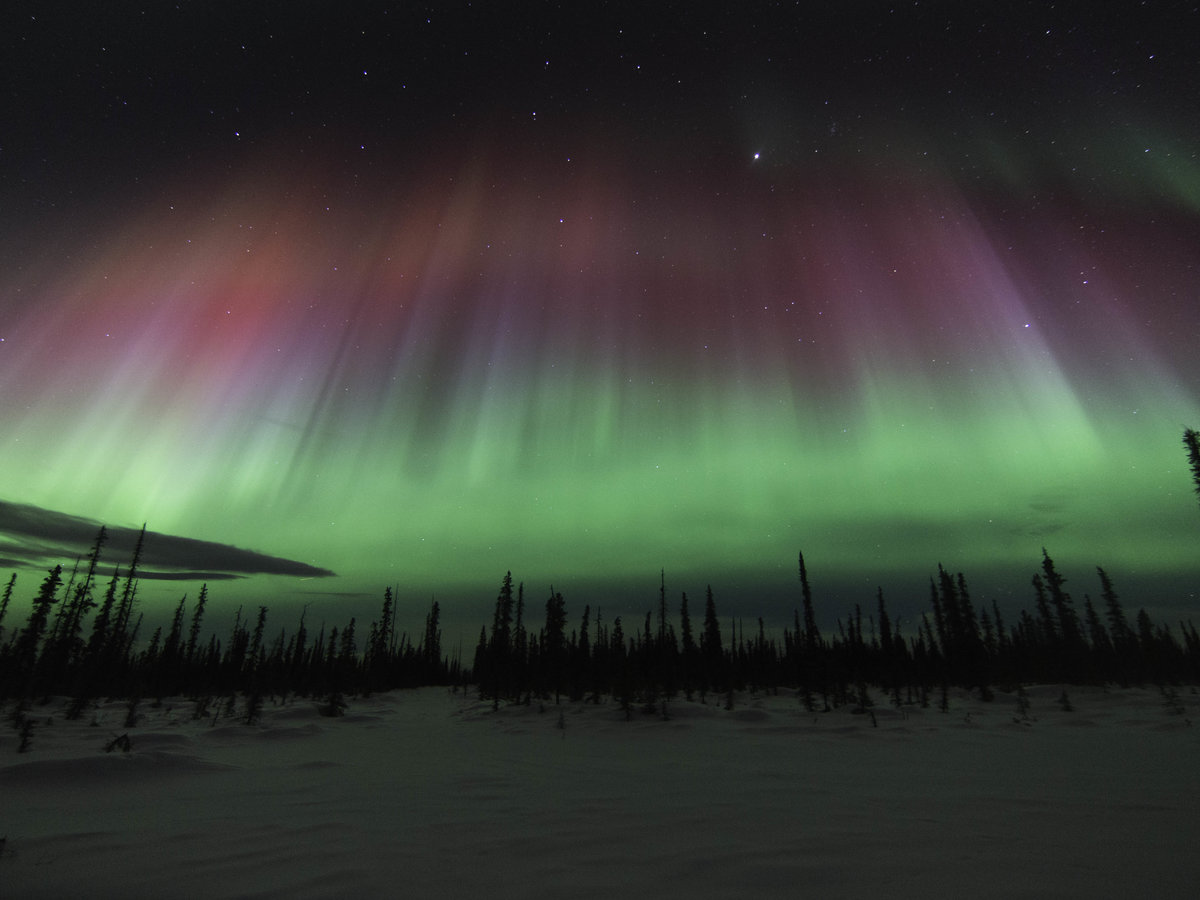 The Northern Lights Above Alaska. (Photo By Snowshoe Photography, Via  Flickr.)