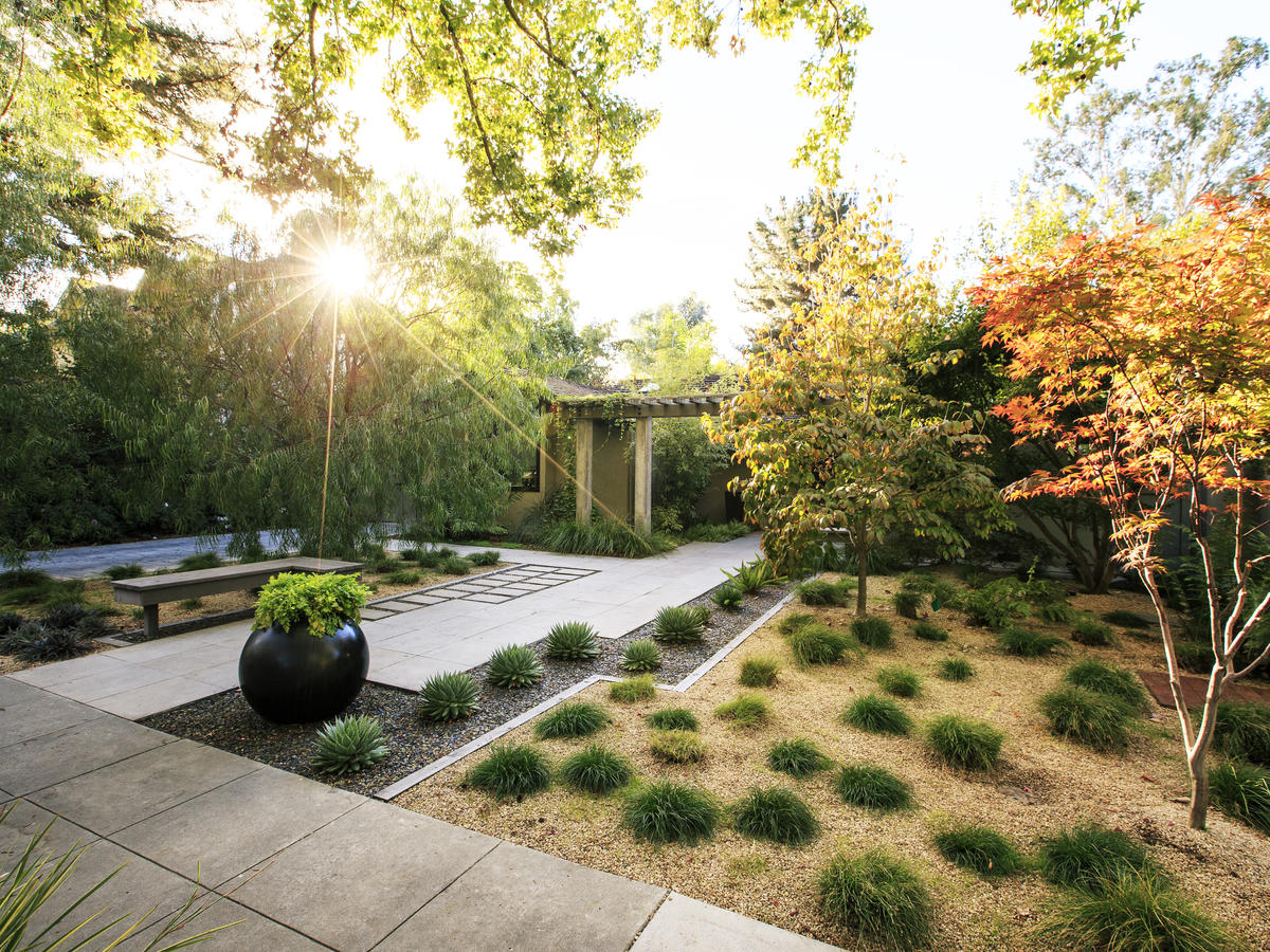 Shade Garden Design Layout Backyards