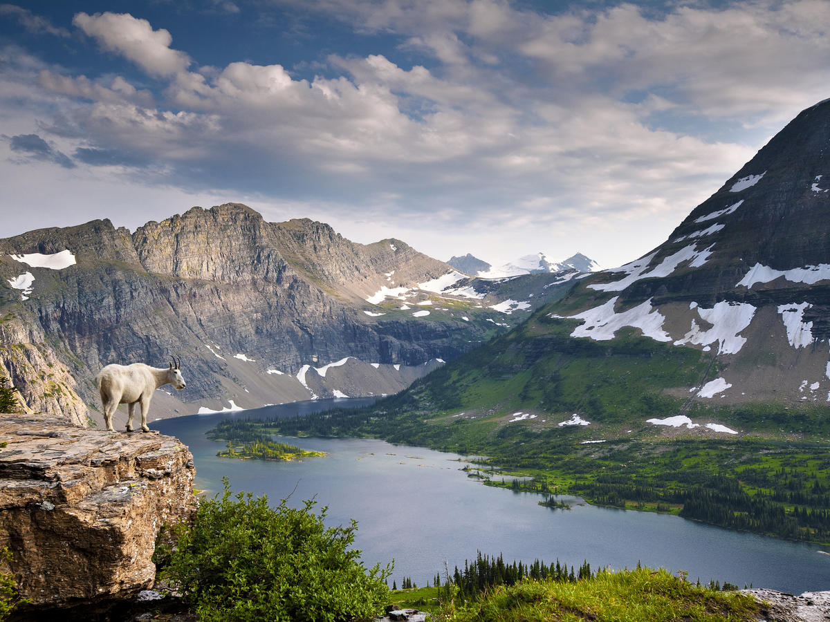 Please Don't Treat National Parks Like a Garbage Can, Says Glacier National Park