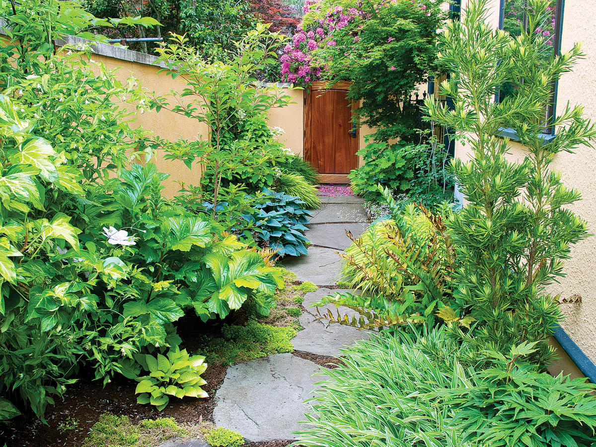Side Yard Ideas - Sunset Magazine Raised Planter Bo Along Fence Backyard Ideas Las Vegas on