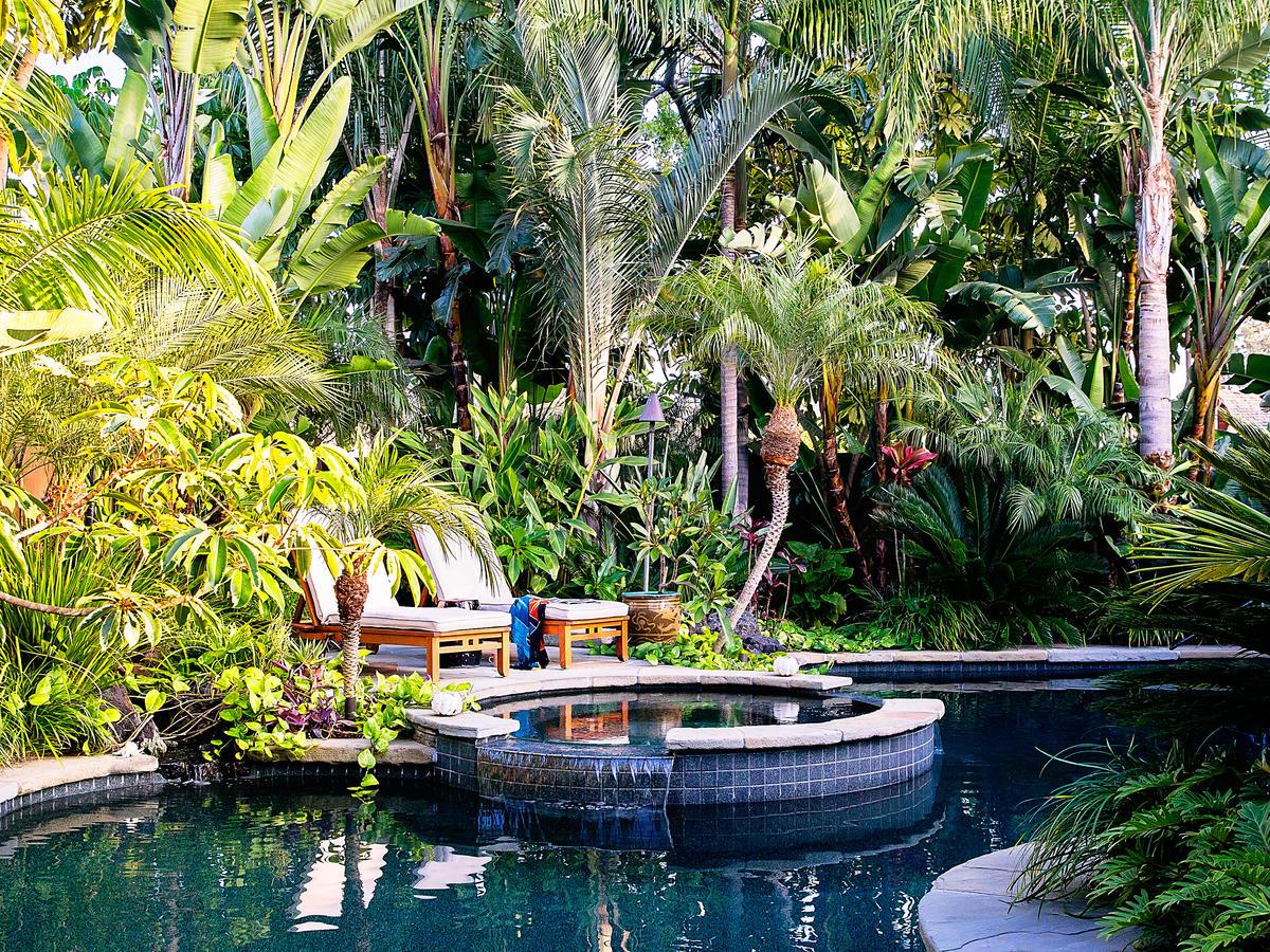 Tropical Plants Retreat - Sunset.com - Sunset Magazine