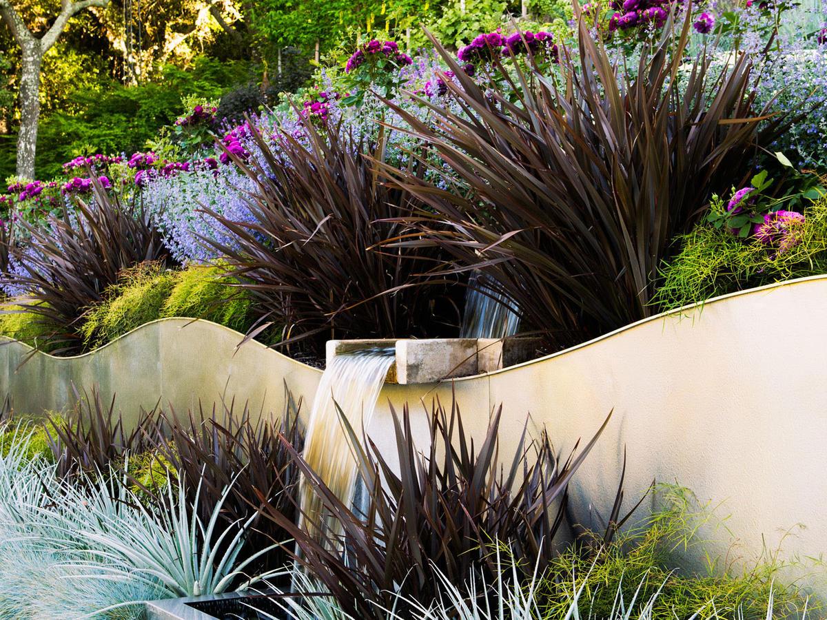 Surprising Planting Pairings Sunset Magazine