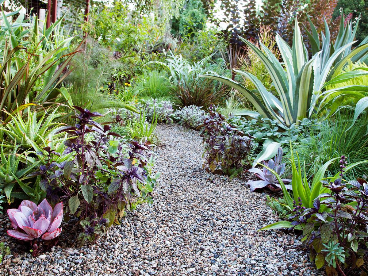 Ideas for Your Garden Layout - Sunset Magazine