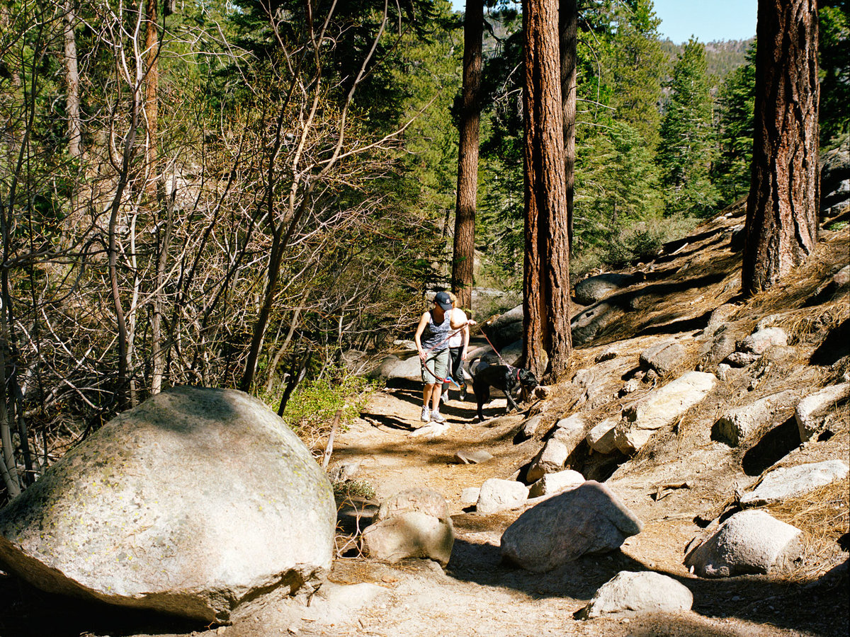 Castle Rock hiking trail at Big Bear Lake