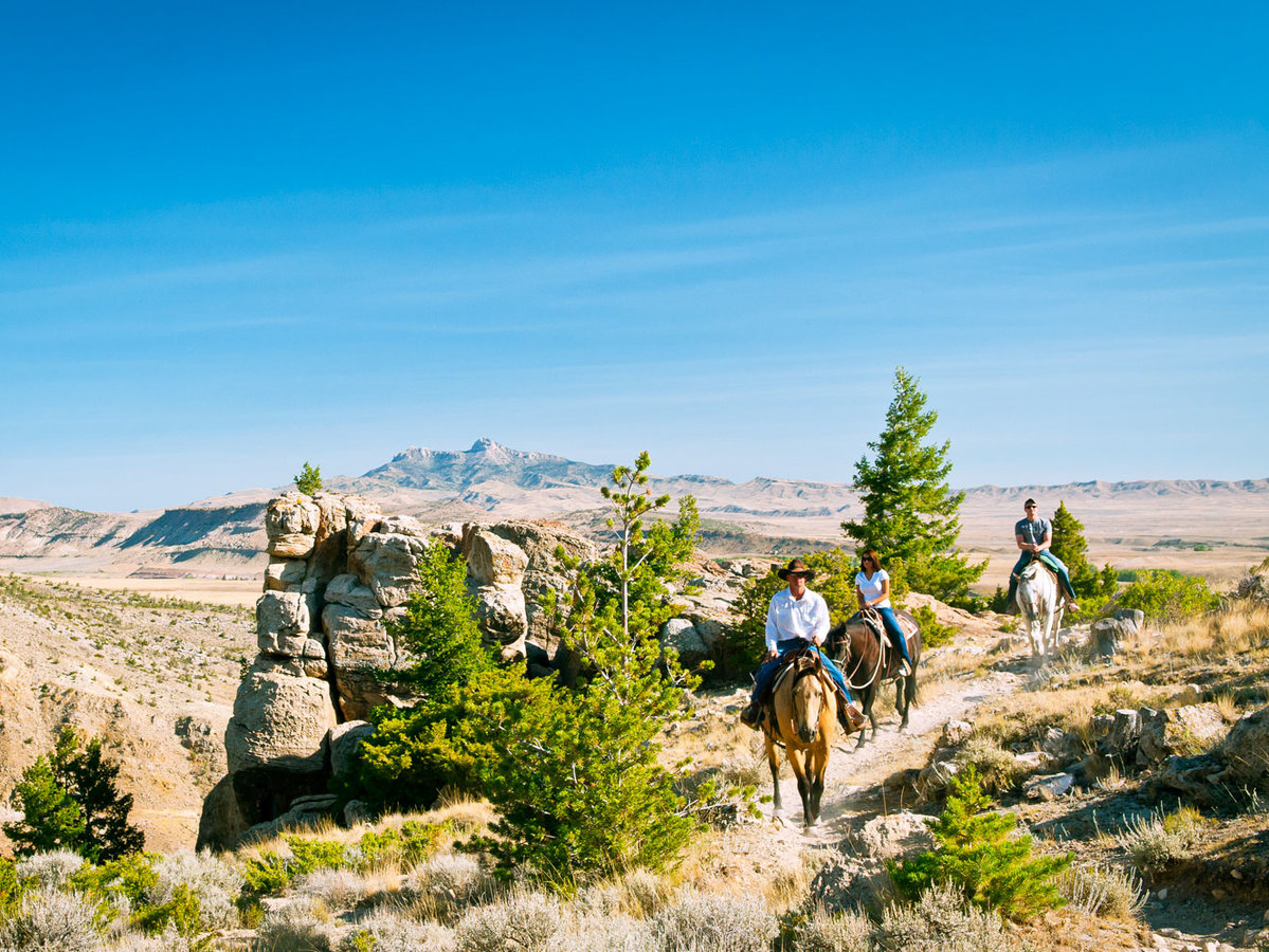 Cedar Mountain Trail Rides